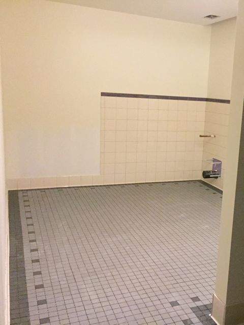 The tile floors in the lower level bathrooms are laid out and ready for grout.