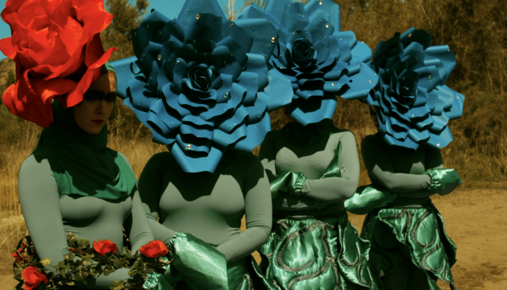 flowerstare copy.png