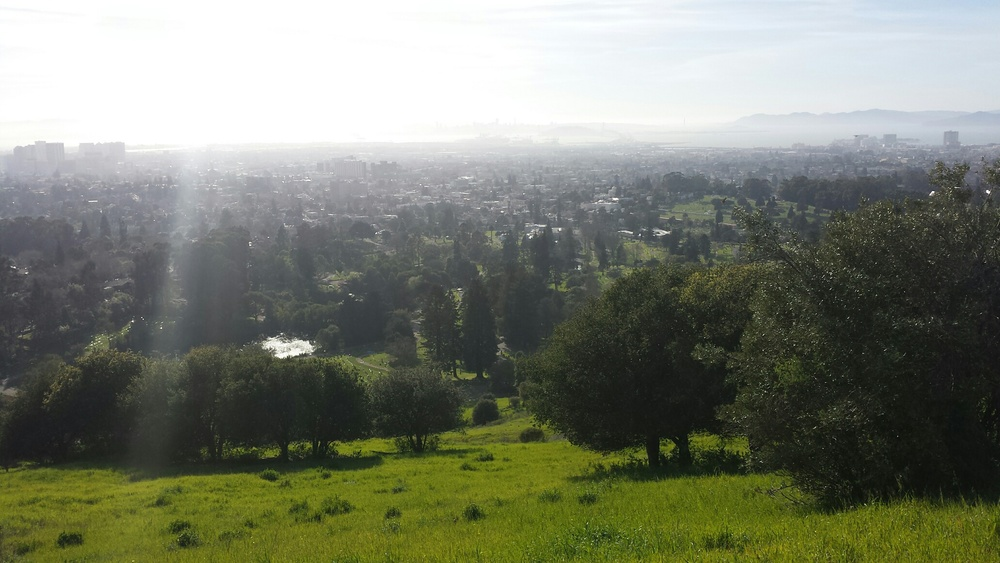 Oakland from the top of the cemetery
