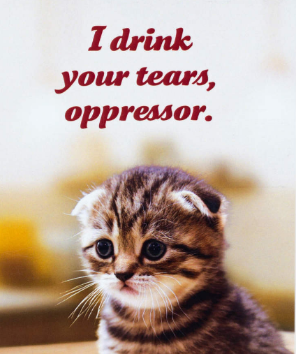 image from the Social Justice Kitten collection by Sean Teharatchi