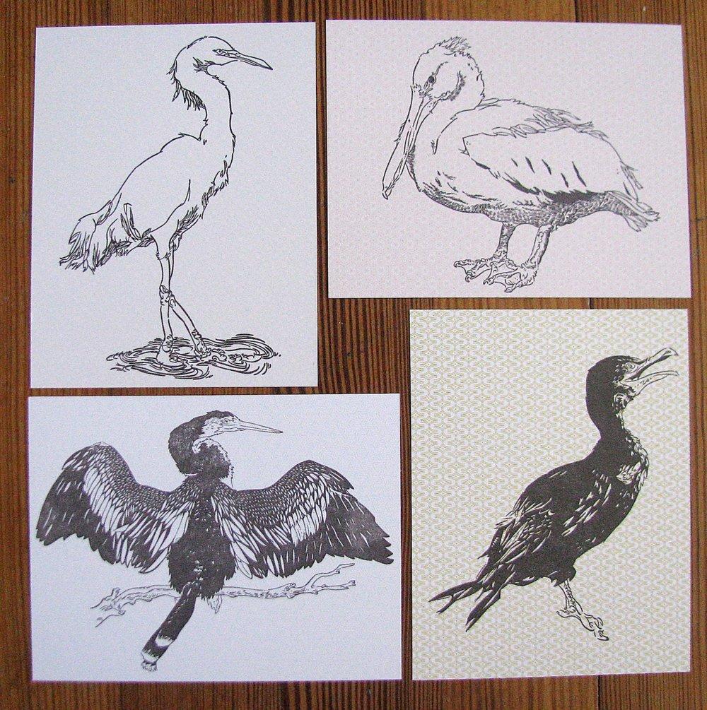 4 la birds.jpg