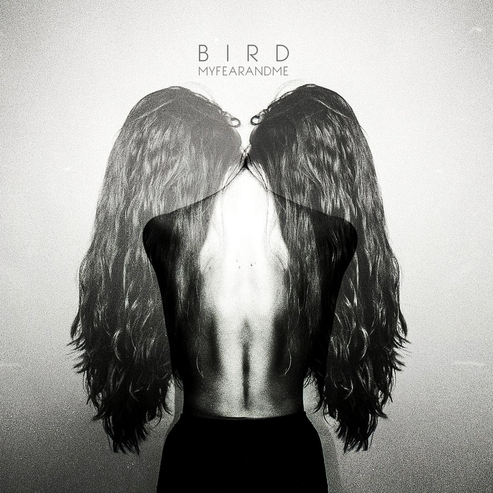 Albums of 2014 #14 - Bird - My Fear & Me