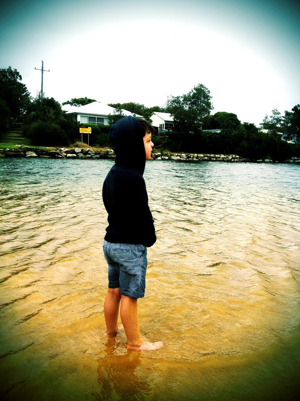 Pondering Life