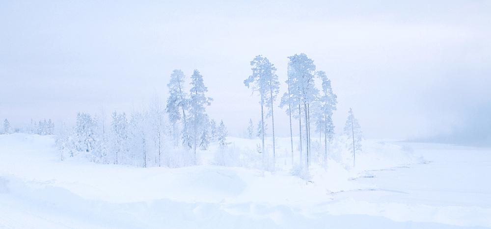 winterlandscape2.jpg