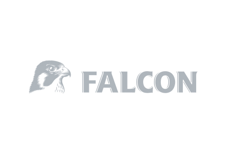 Falcon_grey.jpg