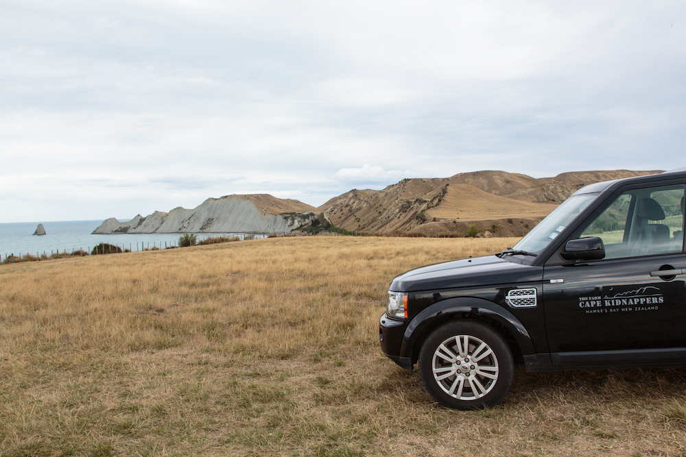 Property Tour of Cape Kidnappers - No visit to The Farm at Cape Kidnappers is complete without a tour of this 6,000 acre working sheep and cattle farm.  Explore this magnificent property in four-wheel drive comfort.