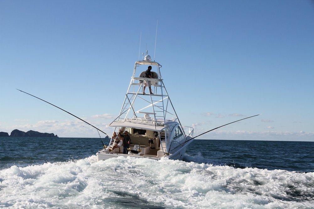 钓鱼探险之旅 - 群岛湾 -