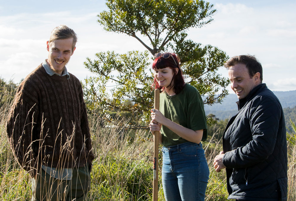 PLANT A NATIVE KAURI TREE - We will calculate your total carbon emissions, and offset this by planting back into the native kauri forest.