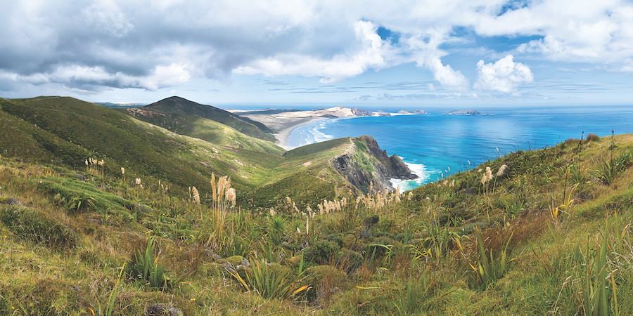 QUAD BIKING & CAPE REINGA HELI TOUR  - the far North