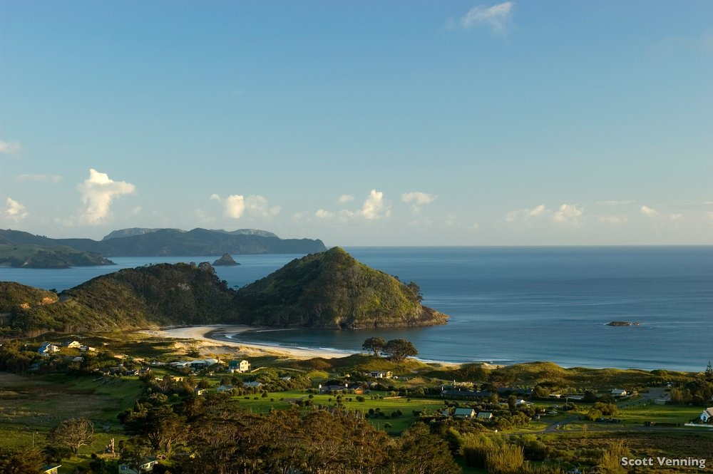 VISIT GREAT BARRIER ISLAND - GREAT BARRIER ISLAND