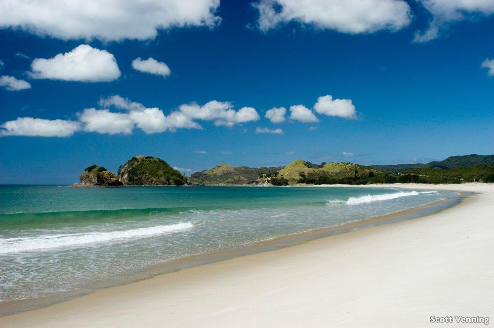 L331-Kaitoke-Beach-Auckland-Scott-Vennin.jpg