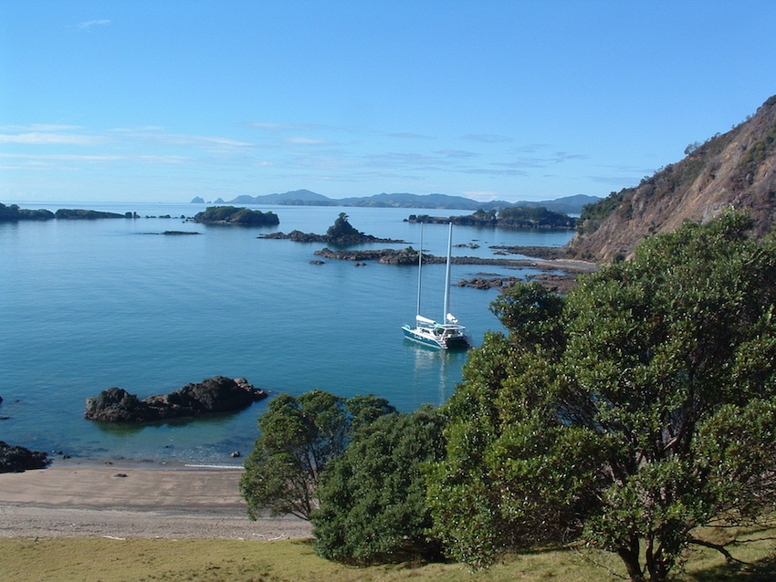 Moturoa Island copy.jpg