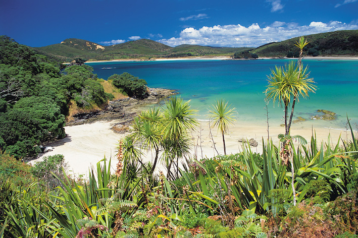 BAY OF ISLANDS - NORTHLAND, NZ