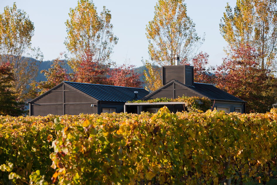 Craggy Range Vineyard Cottage copy.jpg