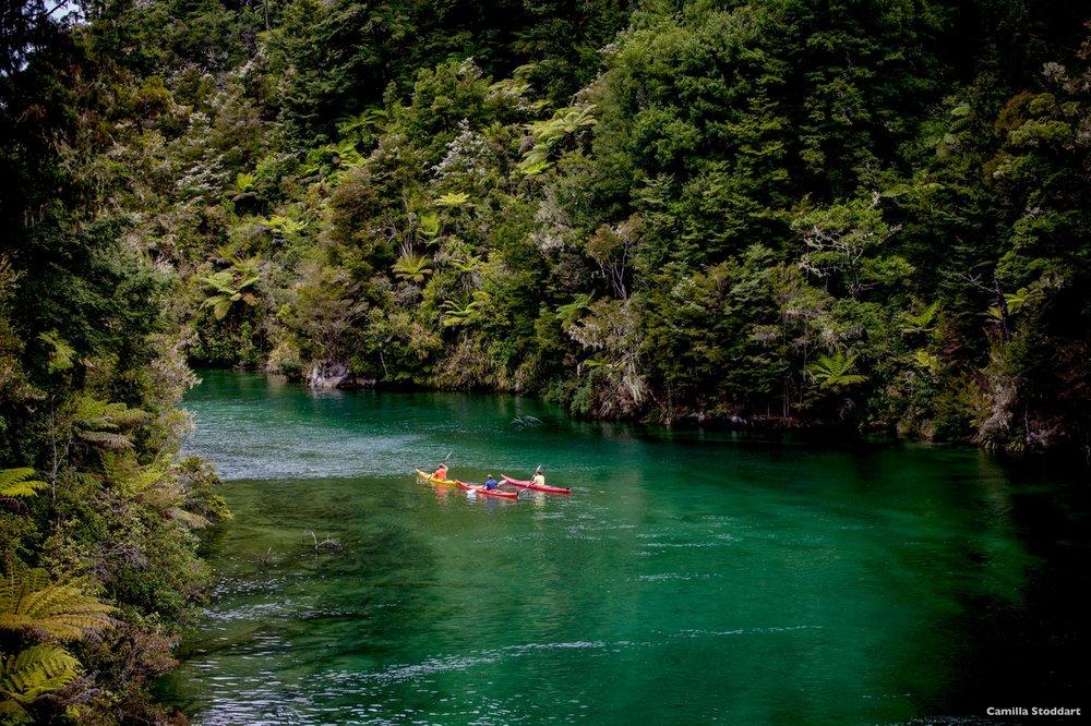 AK34-Abel-Tasman-National-Park-Nelson-Camilla-Stoddart (1).jpg