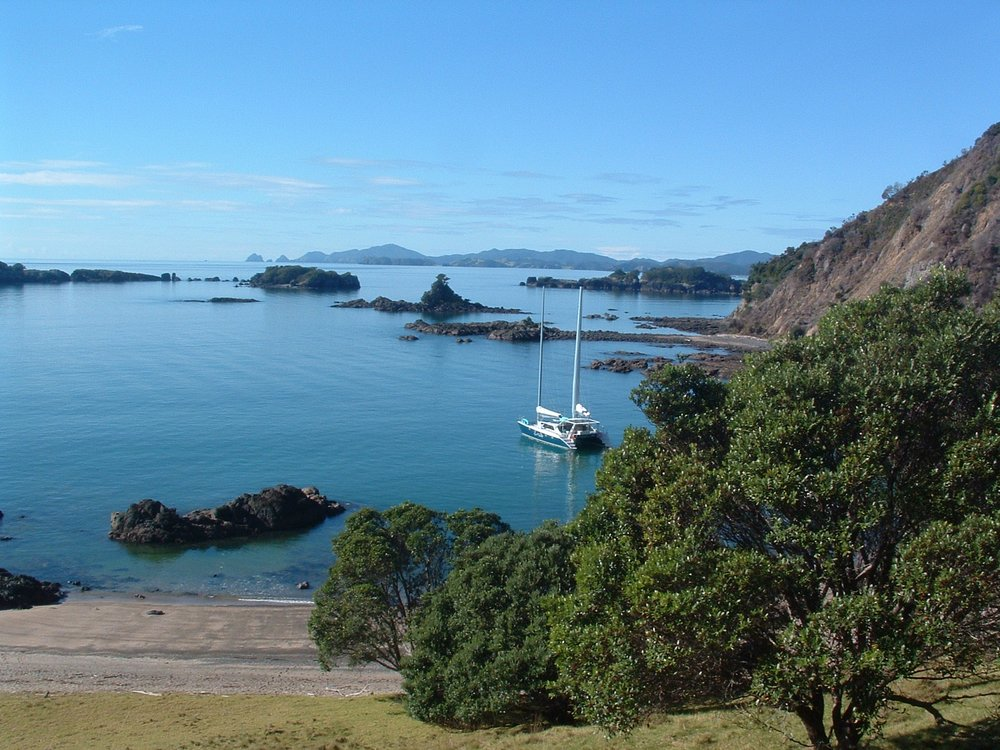 Moturoa Island.JPG