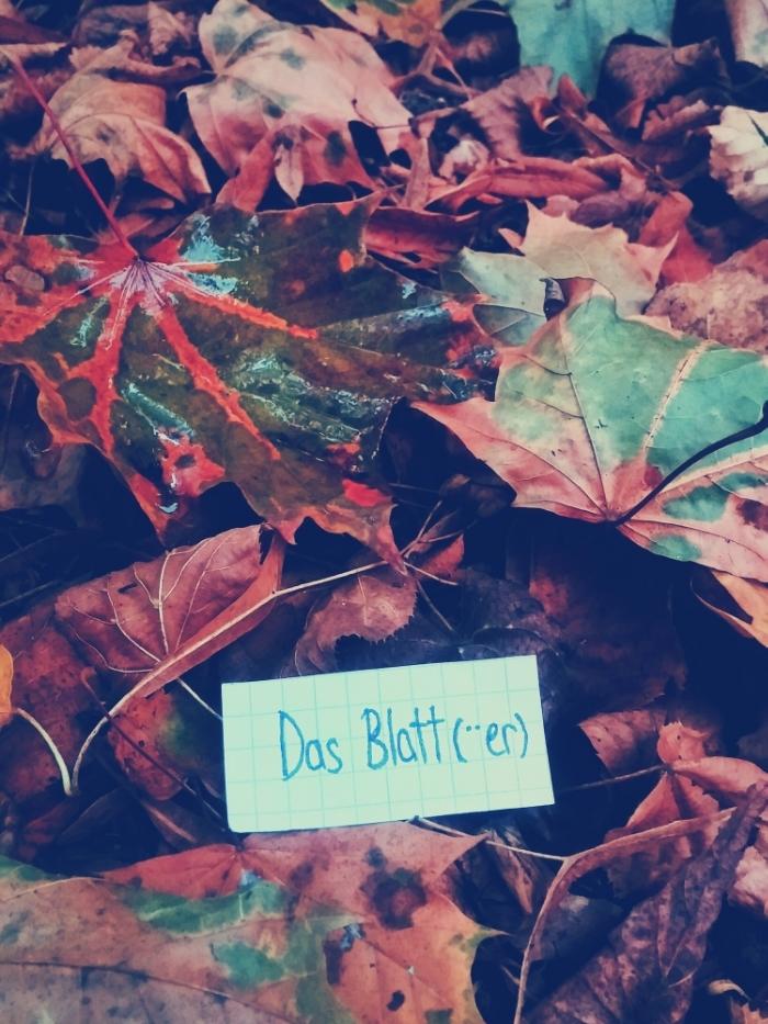 das Blatt - leaf