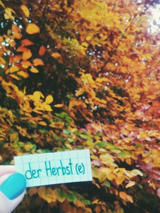 der Herbst - Autumn