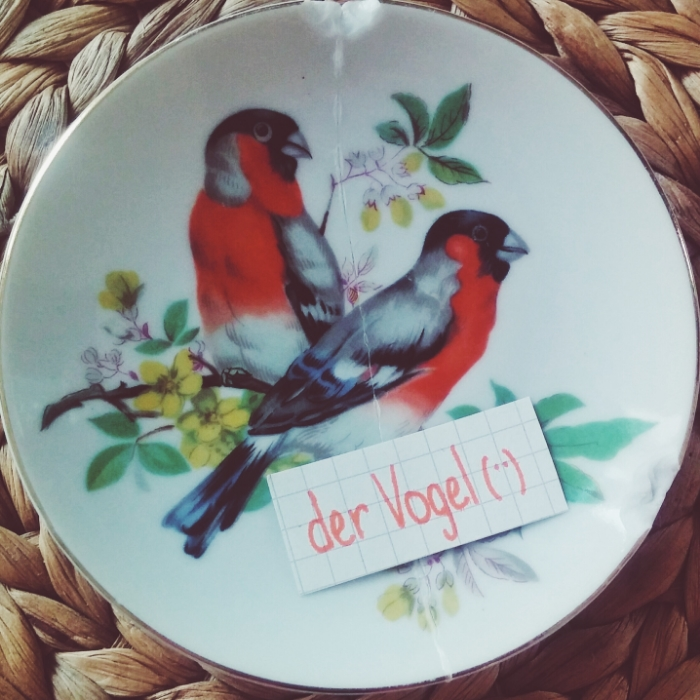 der Vogel - bird