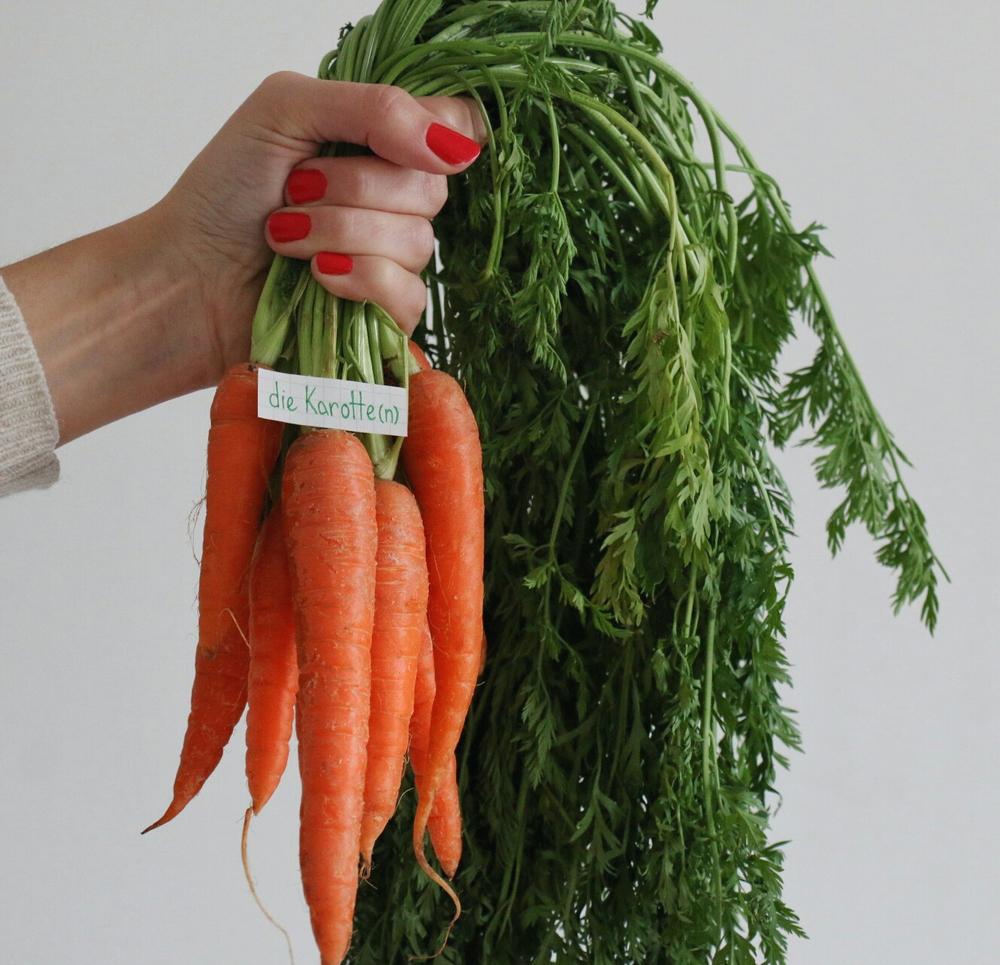 die Karotte - carrot