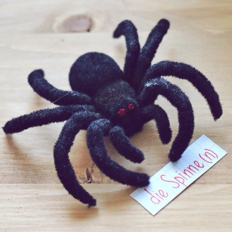 die Spinne - Spider