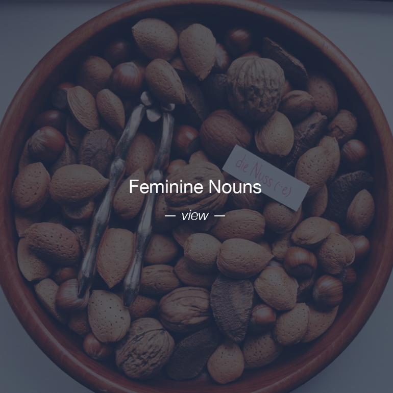 Feminine nouns