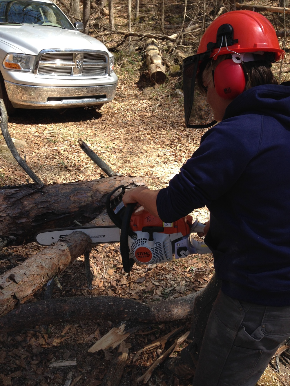 charlotte chainsaw.JPG
