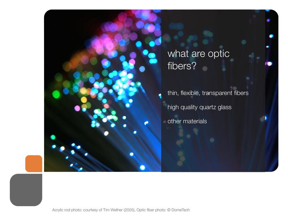 role_of_fiber_og_presentation 22.jpeg