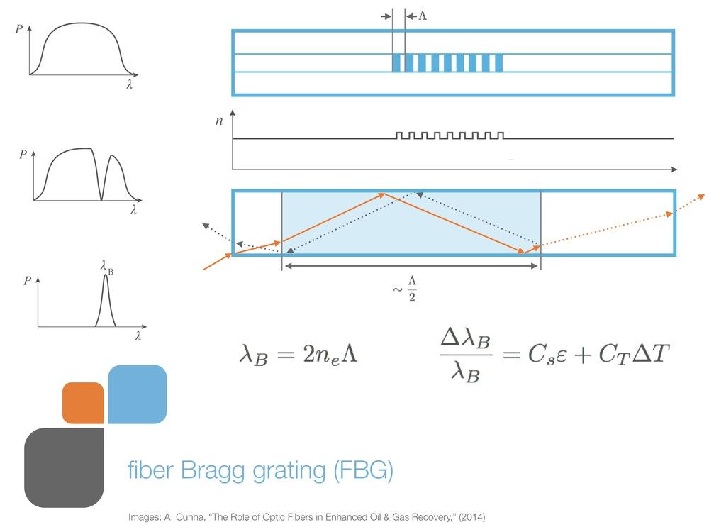 role_of_fiber_og_presentation 26.jpeg