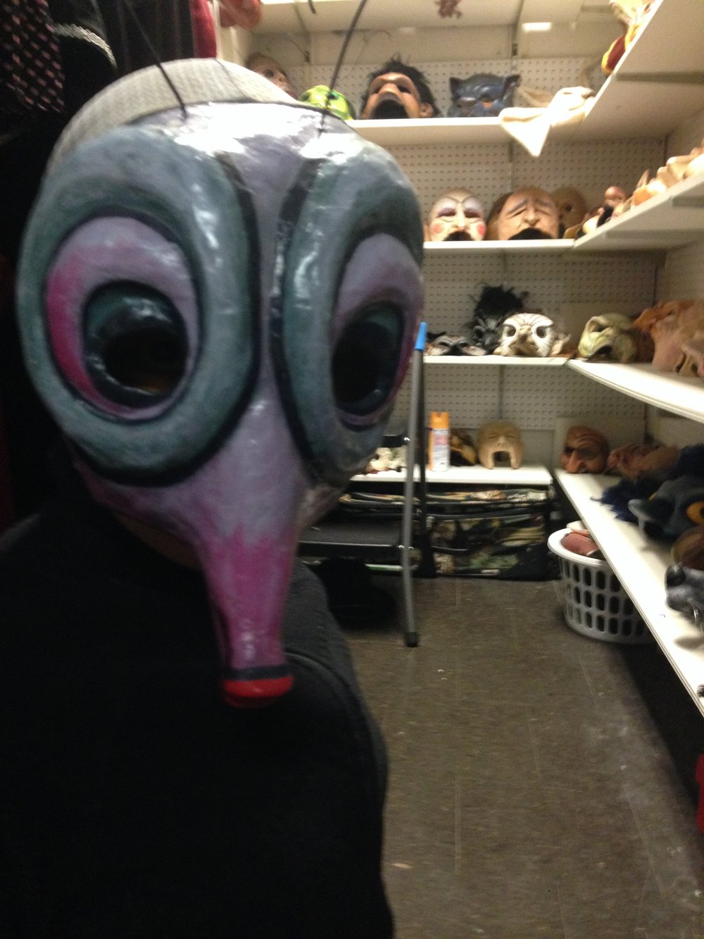 A sneak peek into the mask closet.