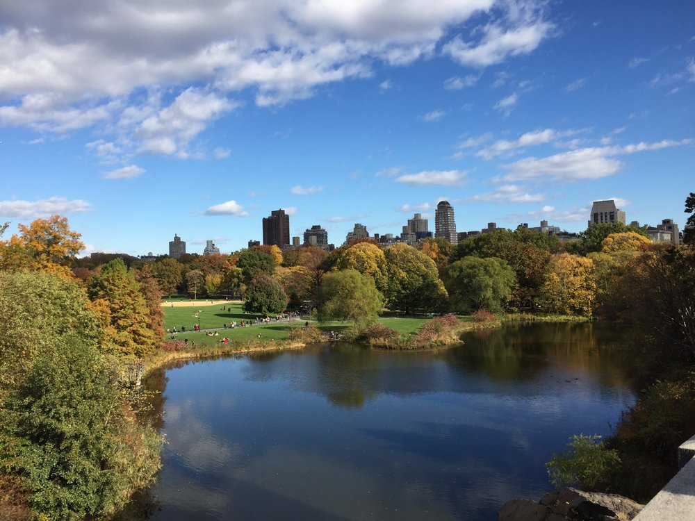 A picture I snapped during my walk through Central Park earlier this afternoon, the leaves are just starting to change and its magical to say the least.