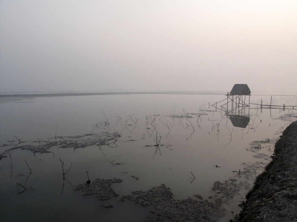 Salinity in the South West Region of Bangladesh and the Impact of Climate Change