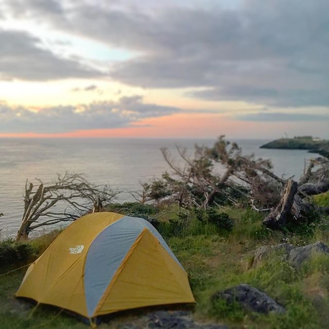 Cliff-side camping ⛺️ next to the sea 🌊 goes down as one of the most amazing experiences I've ever had. The site was always teeming with life as sea birds flew by and the sound of the waves rolling into the rocks could be heard below. On multiple occasions we saw porpoises in tandem swim by, on another morning we heard the sound of whales breathing. Every morning you couldn't wait to unzip the tent and look outside as the sun rose and fell. At night the Swallowtail Lighthouse in the distance would stream its light across the water, one foggy morning we were even awoken by the fog horn sounding across the sea. Grand Manan Island is a place I will never forget and hope to one day return to. The island 750 miles from home on the Atlantic has captured our hearts and imagination for years to come. #neverstopexploring #grandmanan #newbrunswick #canada #atlanticocean #goatworthy #atmosphere #optoutside #getoutside #hiking #camping #lighthouse #coast #sunrise #summer #explorecanada #vacation #dreamscape