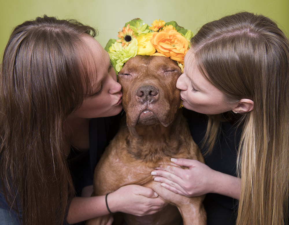 The girls at Mr Bones and Co kiss their rescue Kona during a Flower Power photoshoot.