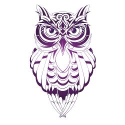 Owl School Logo smaller.png