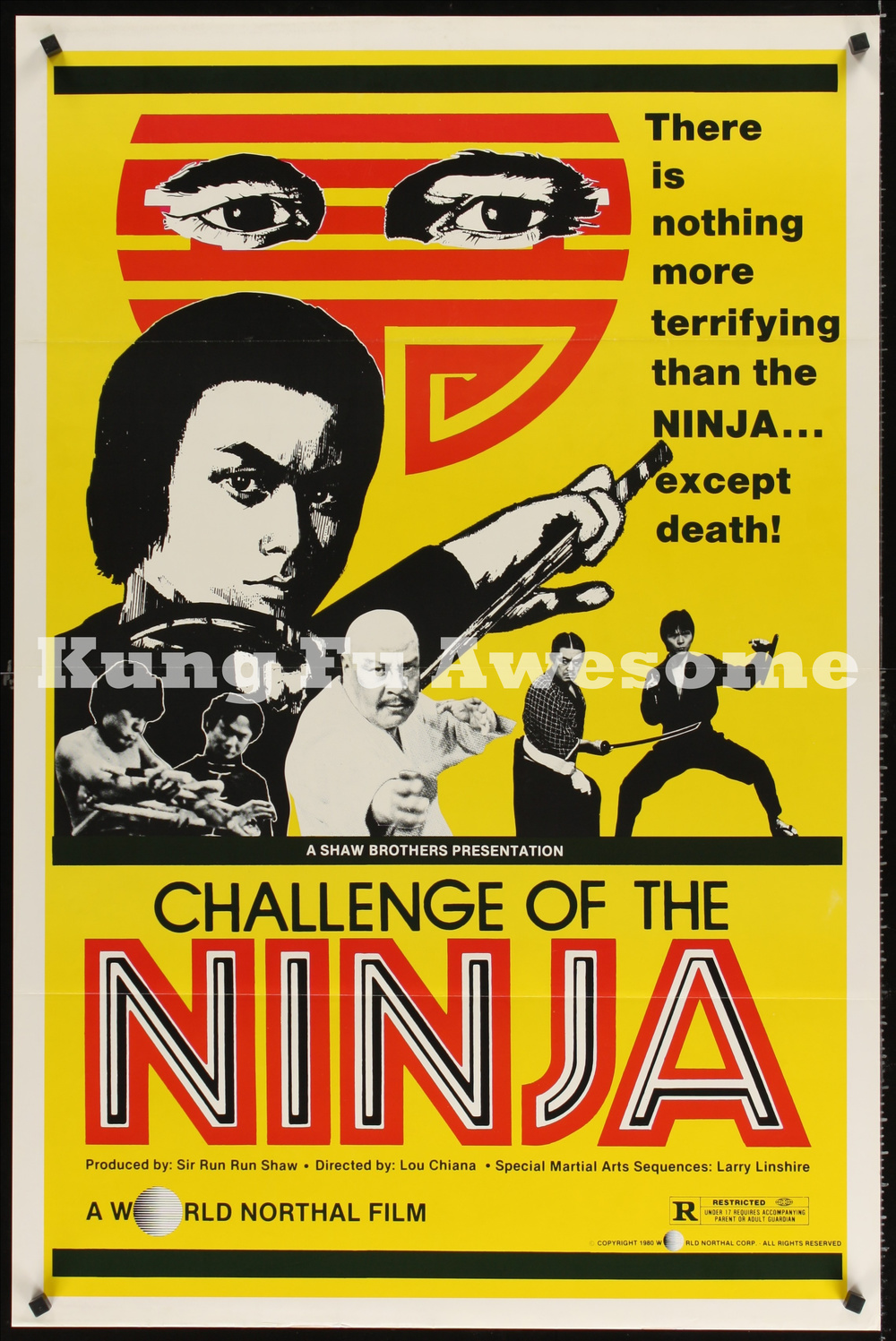 challenge_of_the_ninja_JC02220_L.jpg