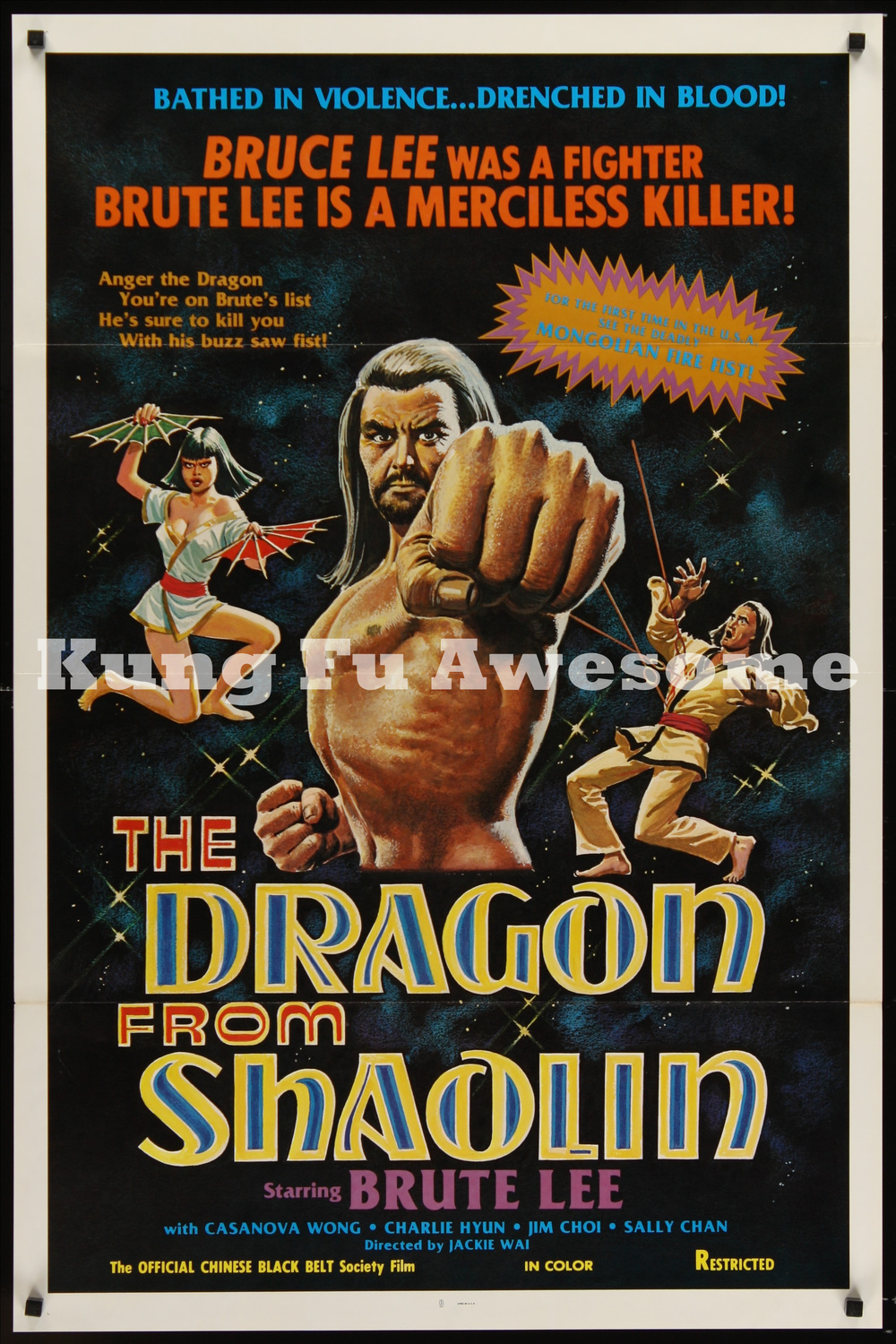 dragon_from_shaolin_NZ03771_L.jpg
