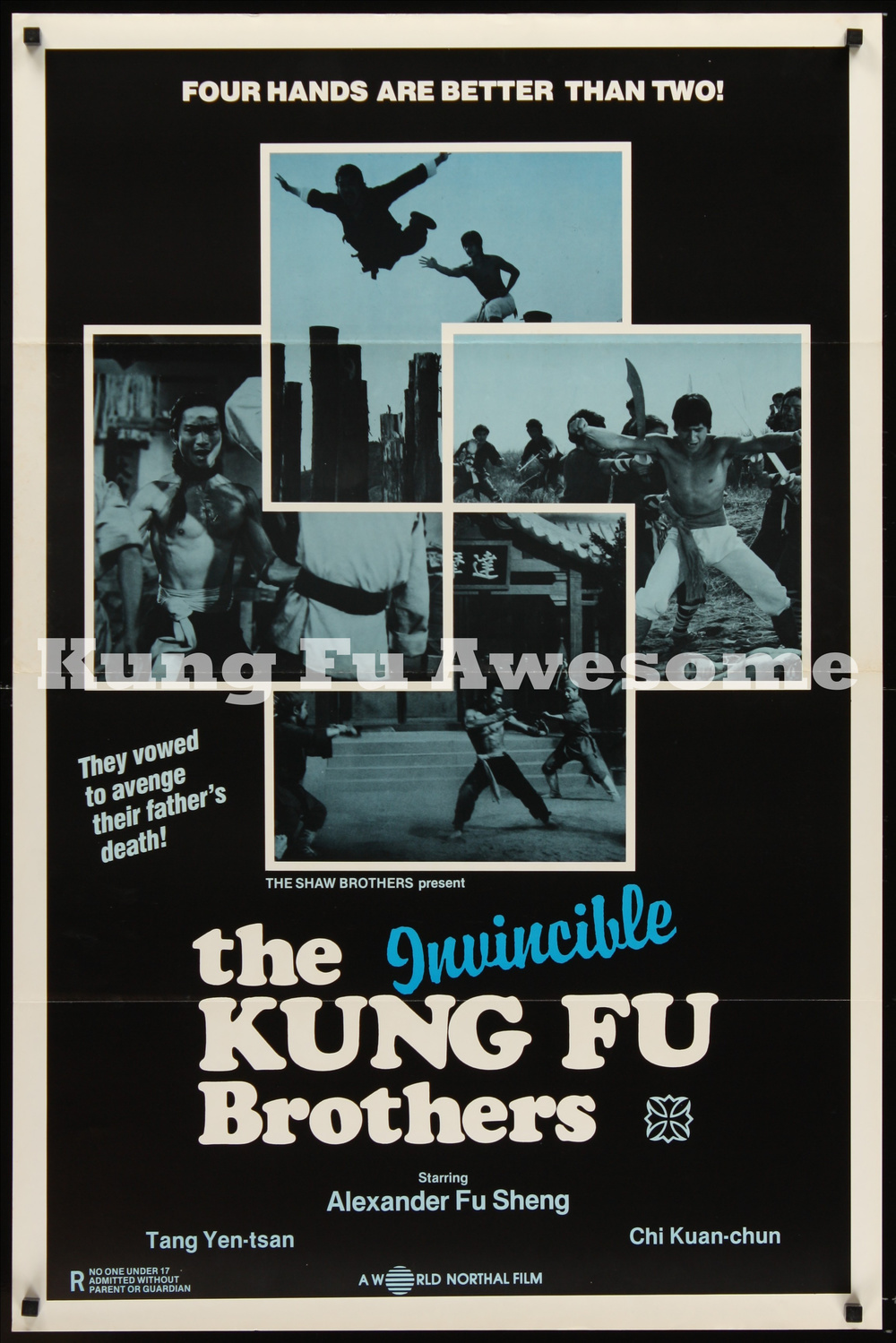 invincible_kung_fu_brothers_NZ03775_L.jpg