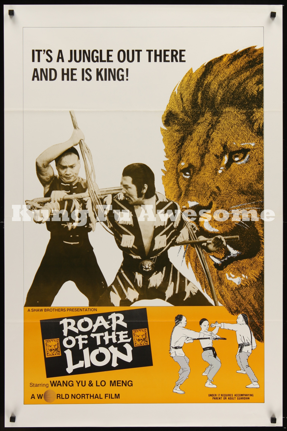 roar_of_the_lion_NZ03773_L.jpg