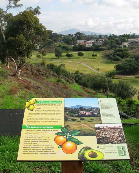 interpretive_olivewood_gardens_landscape.jpg