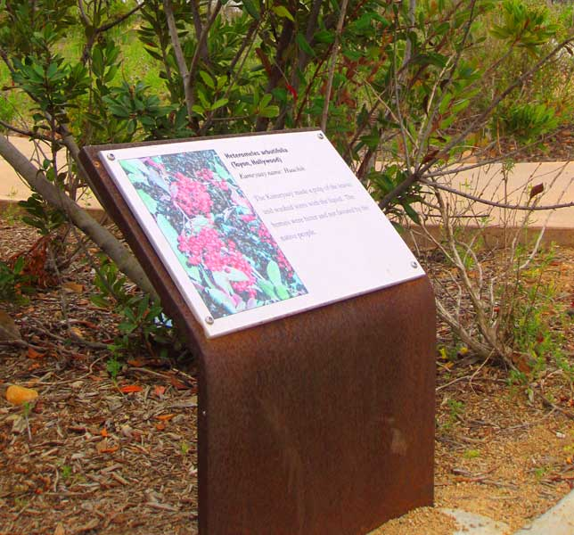 Camino Ruiz Park, San Diego, CA