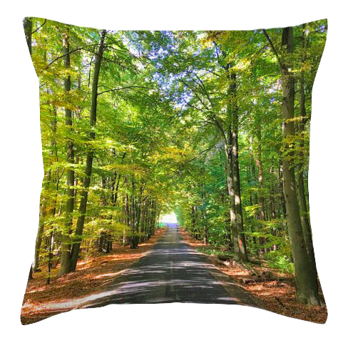 products-throw-pillow-in-the-woods_orig.png