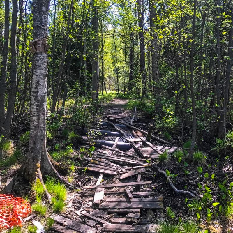 Abandoned trail in Kruunuvuori, Helsinki, Finnland