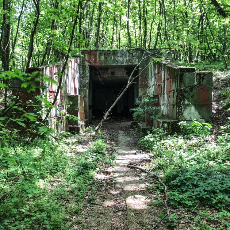 The bunkers at Devinska Kobyla are well hidden in the woods.