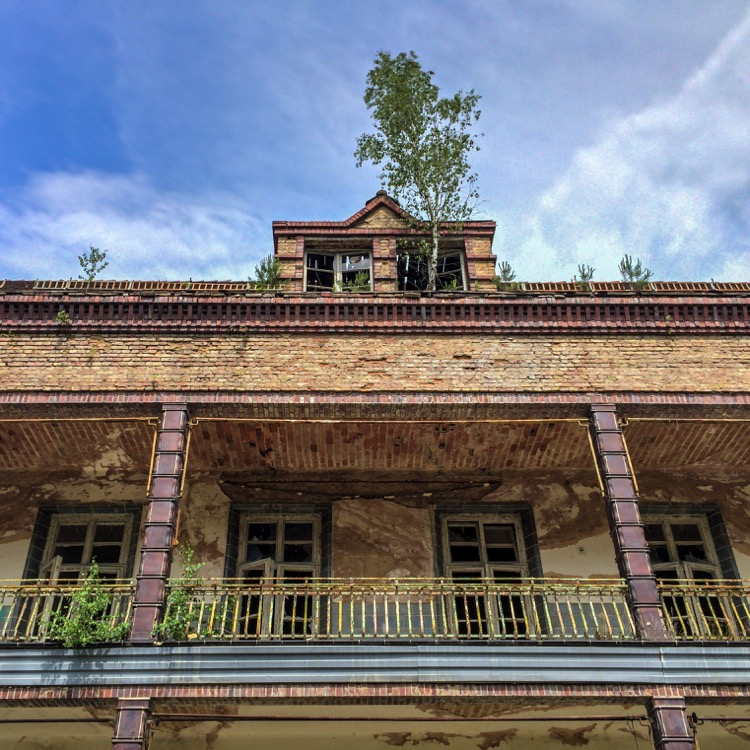 Nature is taking back buildings at the Beelitz-Heilstätten