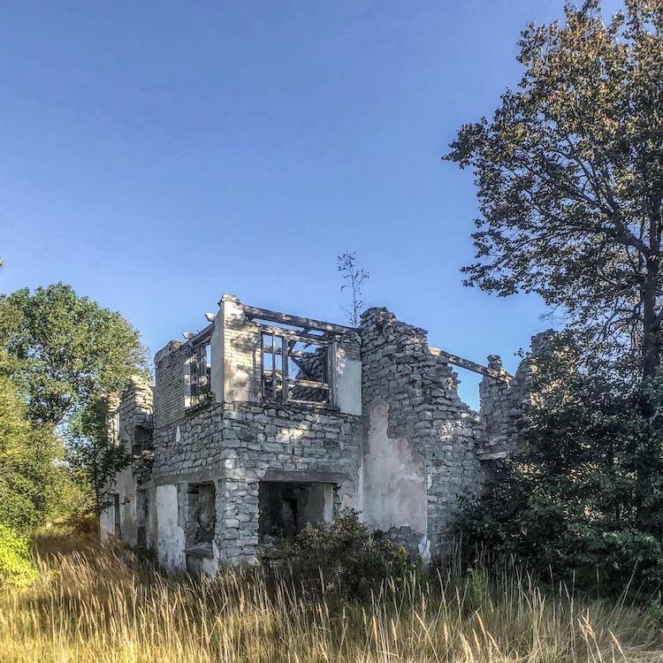 Ruin in Viivikonna