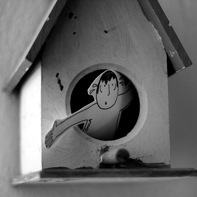 casa_passarinho.jpg