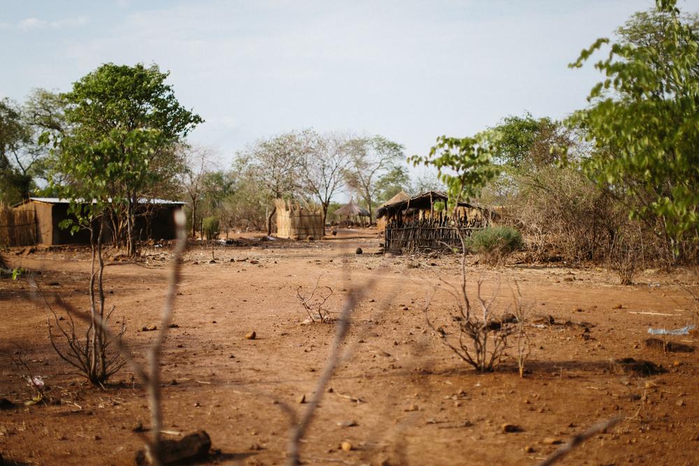 MichaelLiedtke_Zambia115.JPG