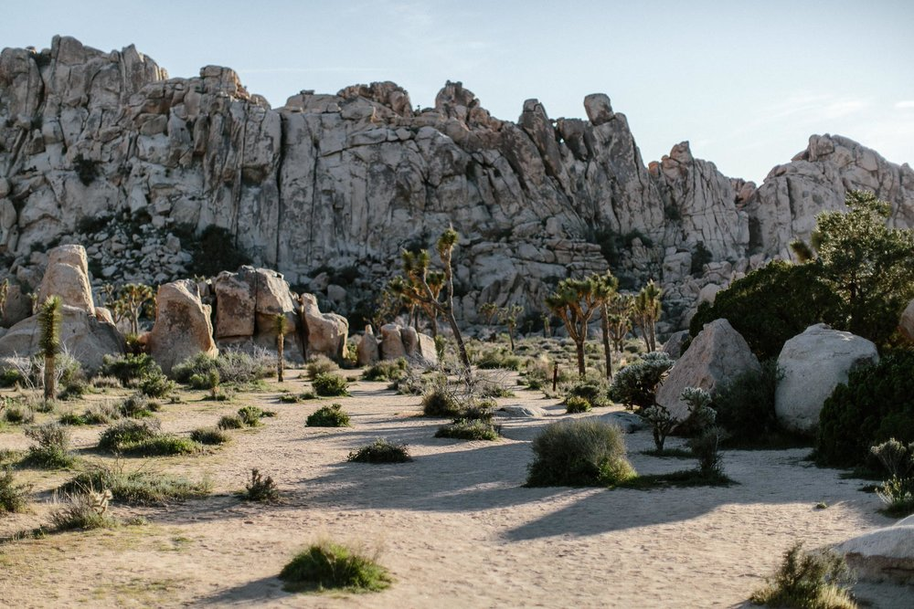 Joshua_Tree_Engagement_Wedding_Elopement_Photogapher_48.jpg