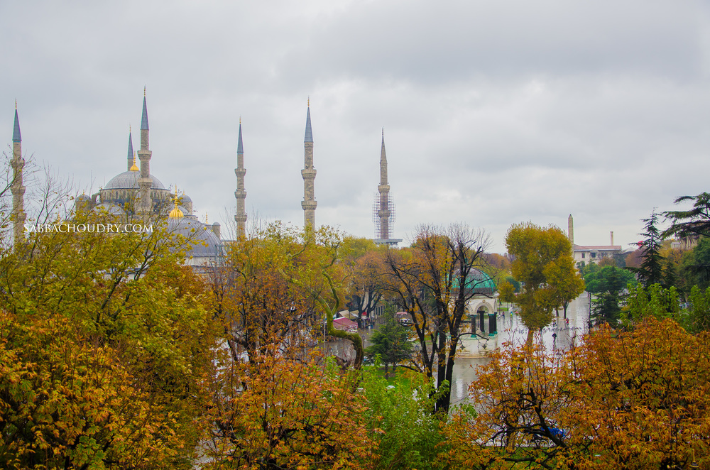 Blue Mosque amongst the autumn colours
